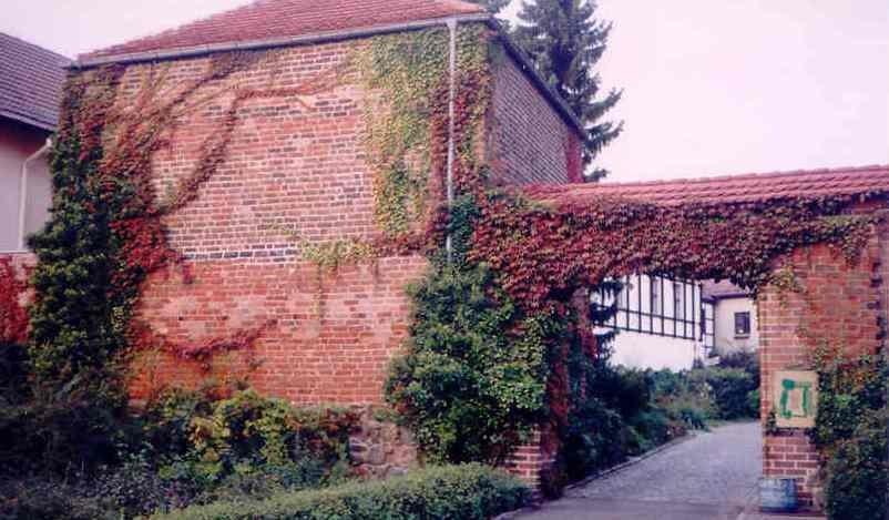 Reste des Wachturms und der Schlossmauer, Foto 2002